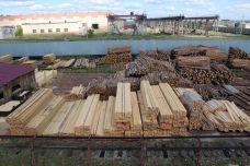 Территория Лесоперерабатывающего комплекса Лесного Золота
